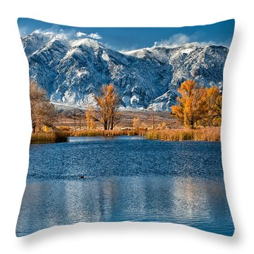 Winter Or Fall Throw Pillow