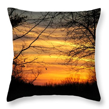 Winter Orange  Throw Pillow by Justin Connor