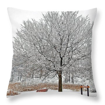 Winter Park Throw Pillow