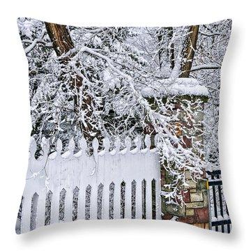 Winter Park Fence Throw Pillow by Elena Elisseeva