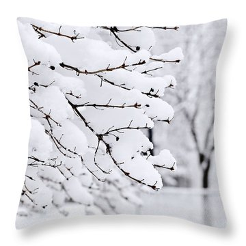 Winter Park Under Heavy Snow Throw Pillow by Elena Elisseeva