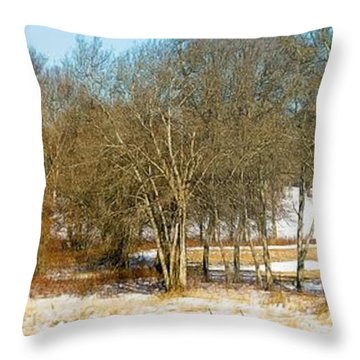 Winter Pasture Throw Pillow by Constantine Gregory