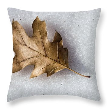 Winter Throw Pillow by Peggy Hughes