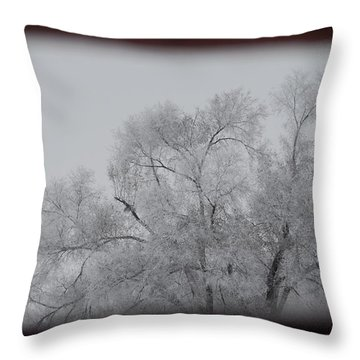 Throw Pillow featuring the photograph Winter Perfectly Framed by Ramona Whiteaker
