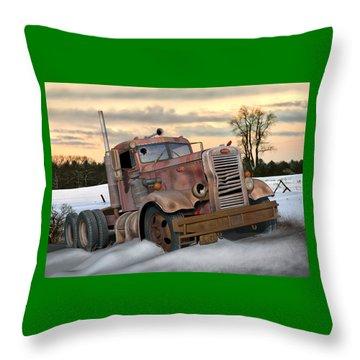 Winter Pete Throw Pillow