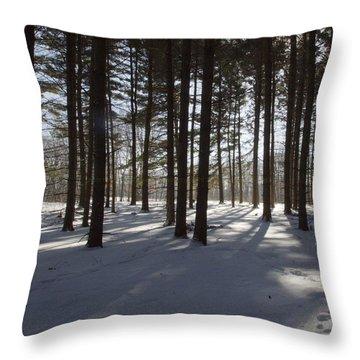 Winter Pines Throw Pillow by Daniel Sheldon