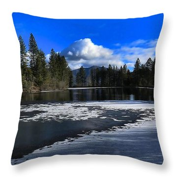 Throw Pillow featuring the photograph Winter Pond Colors by Julia Hassett