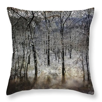 Winter Pond Throw Pillow by Dee Flouton