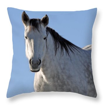 Winter Pony Throw Pillow