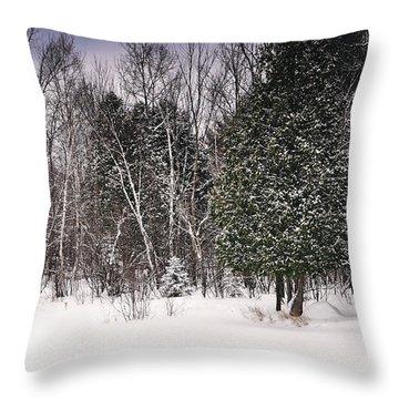 Winter Postcard Throw Pillow by Gwen Gibson