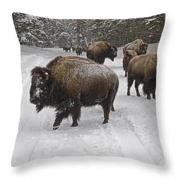 Winter Procession-signed Throw Pillow by J L Woody Wooden