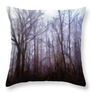 Winter Rain Throw Pillow by Melody McBride