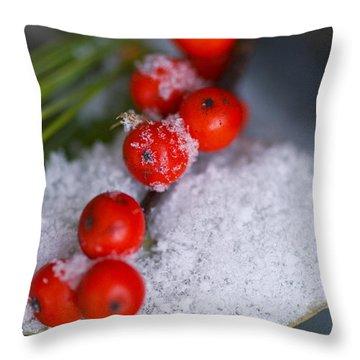 Winter Red Berries Throw Pillow by Birgit Tyrrell