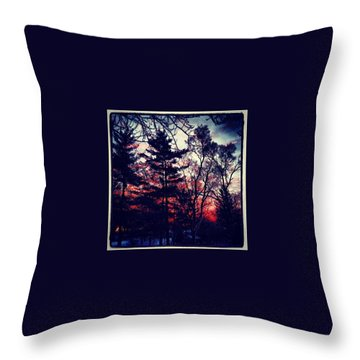 Winter Red Throw Pillow by Frank J Casella