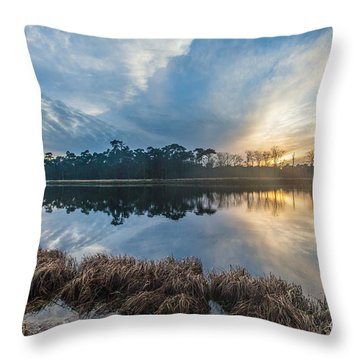 Winter Reflection-1 Throw Pillow