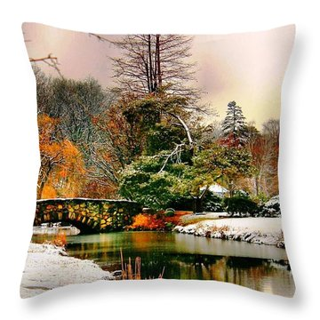 Winter Reflection Throw Pillow by Judy Palkimas