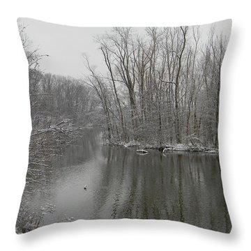 Winter Reflections 1 Throw Pillow