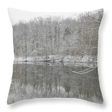 Winter Reflections 2 Throw Pillow