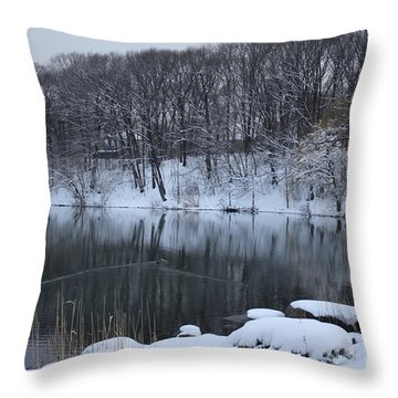Throw Pillow featuring the photograph Winter Reflections by Dora Sofia Caputo Photographic Art and Design