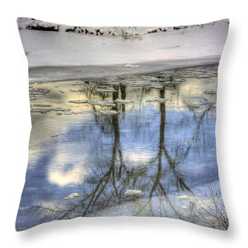Winter Reflections Throw Pillow by John  Greaves
