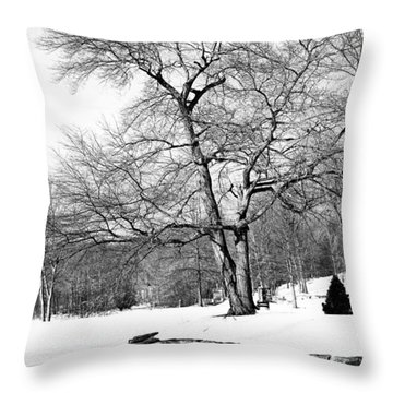 Winter Reflects In Black And White Throw Pillow by Karol Livote