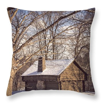 Winter Retreat Throw Pillow