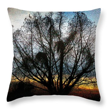 Throw Pillow featuring the photograph Winter Revelations by Ola Allen