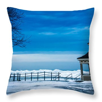 Winter Rhapsody Throw Pillow by Sara Frank