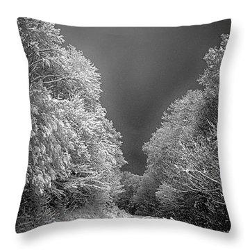 Winter Road Throw Pillow by John Haldane