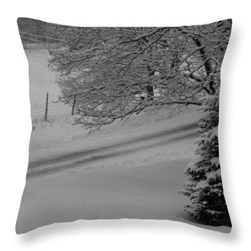 Winter Road Throw Pillow by Lois Lepisto