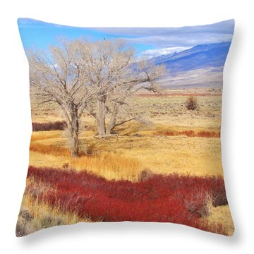 Winter Rust Throw Pillow