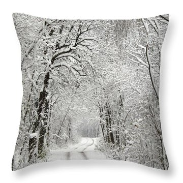 Winter Scene 2 Throw Pillow