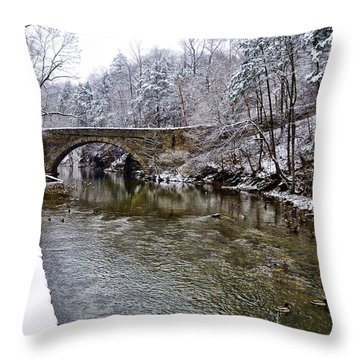 Winter Scene At Valley Green Throw Pillow by Bill Cannon