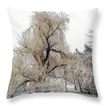 Winter Scene Throw Pillow by Kathleen Struckle