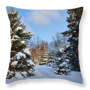 Winter Scenery Throw Pillow by Teresa Zieba