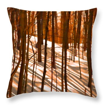 Winter Shadows Throw Pillow