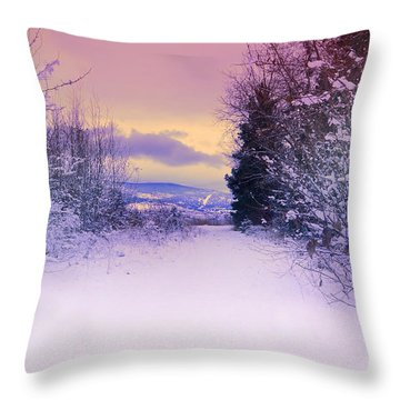 Winter Skies Throw Pillow by Tara Turner