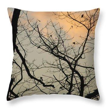 Winter Sky Throw Pillow by Lois Lepisto