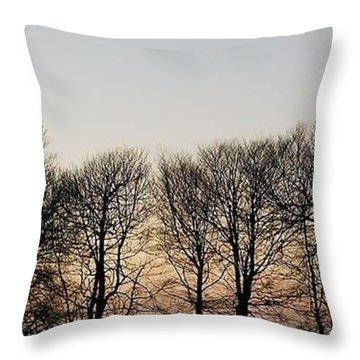 Winter Skyline Throw Pillow
