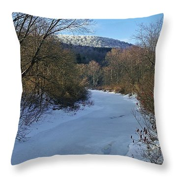 Winter Sleep Throw Pillow