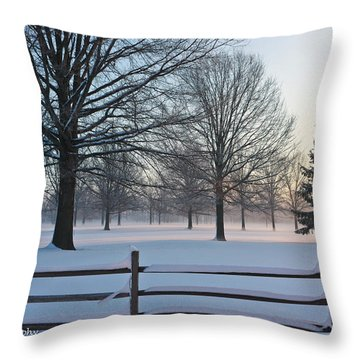 Winter Snow And Shadows Throw Pillow by Ann Murphy