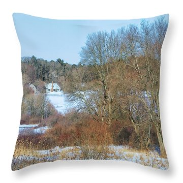 Throw Pillow featuring the photograph Winter Snow by Constantine Gregory