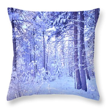 Winter Solace Throw Pillow by Tara Turner