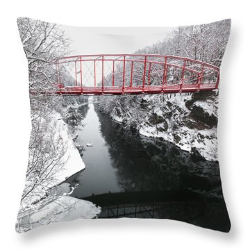 Winter Solitude Square Throw Pillow