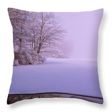 Winter Solstice Throw Pillow