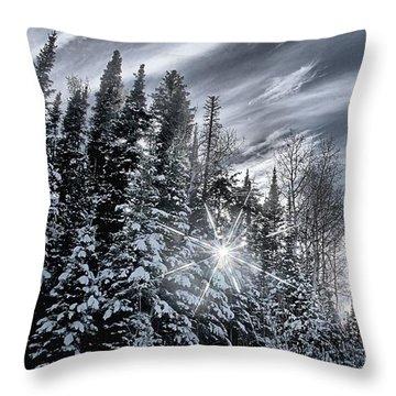 Winter Star Throw Pillow