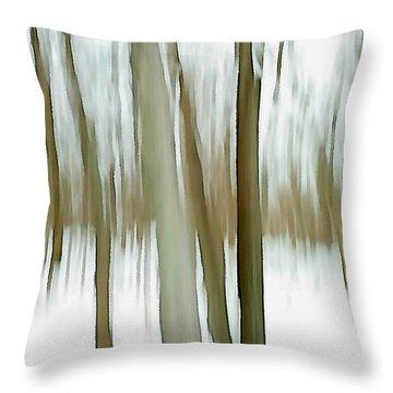 Throw Pillow featuring the photograph Winter by Steven Huszar
