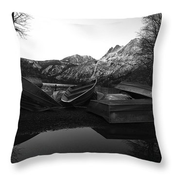 Winter Storage Throw Pillow by Paul Foutz