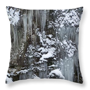 Winter Storm Throw Pillow by Jewels Blake Hamrick