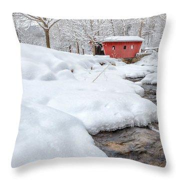Winter Stream Throw Pillow by Bill Wakeley